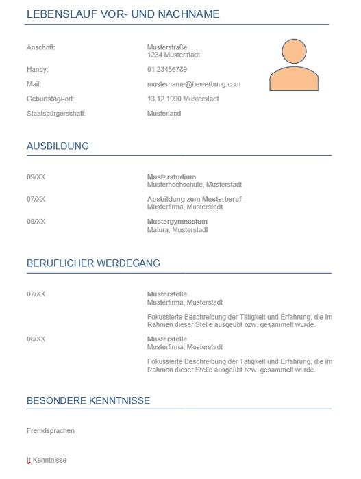 teamFORCE | CV Vorlage